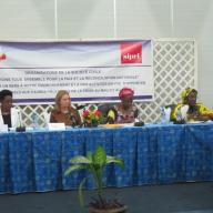 Seminar in Mali to launch SIPRI's new Mali project