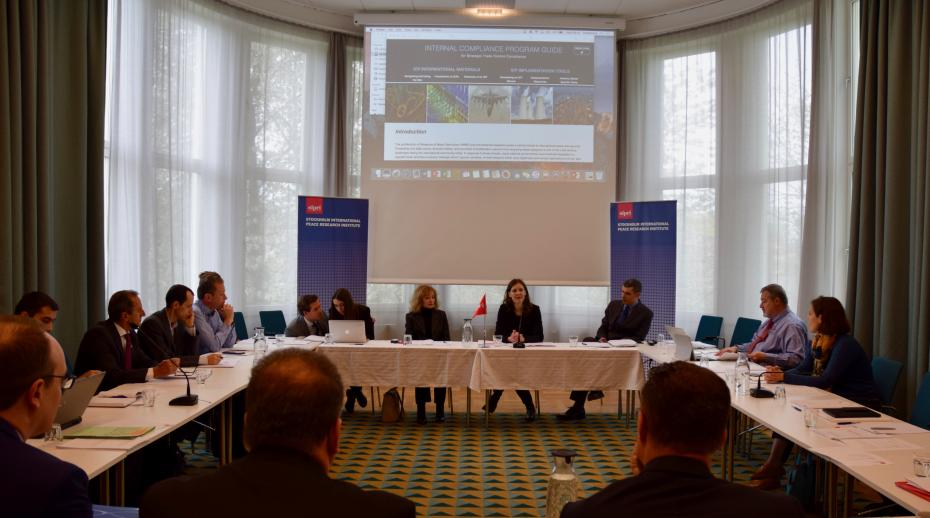 SIPRI host ICP roundtable