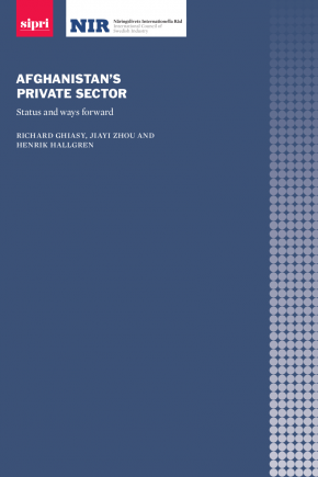 Cover of report 'Afghanistan's private sector: Status and way forward'